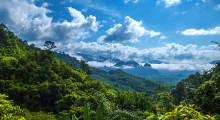 Национальный Парк Као Сок Стандарт