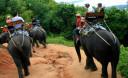 Превью - Катание на слонах на Пхукете