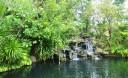 Превью - Экскурсия в ботанический сад на Пхукете