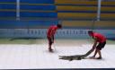 Превью - Ферма крокодилов Crocodile World на Пхукете