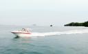 Превью - Моторный катер Crownline 33