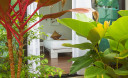 Превью - Villa Pulau NH0033