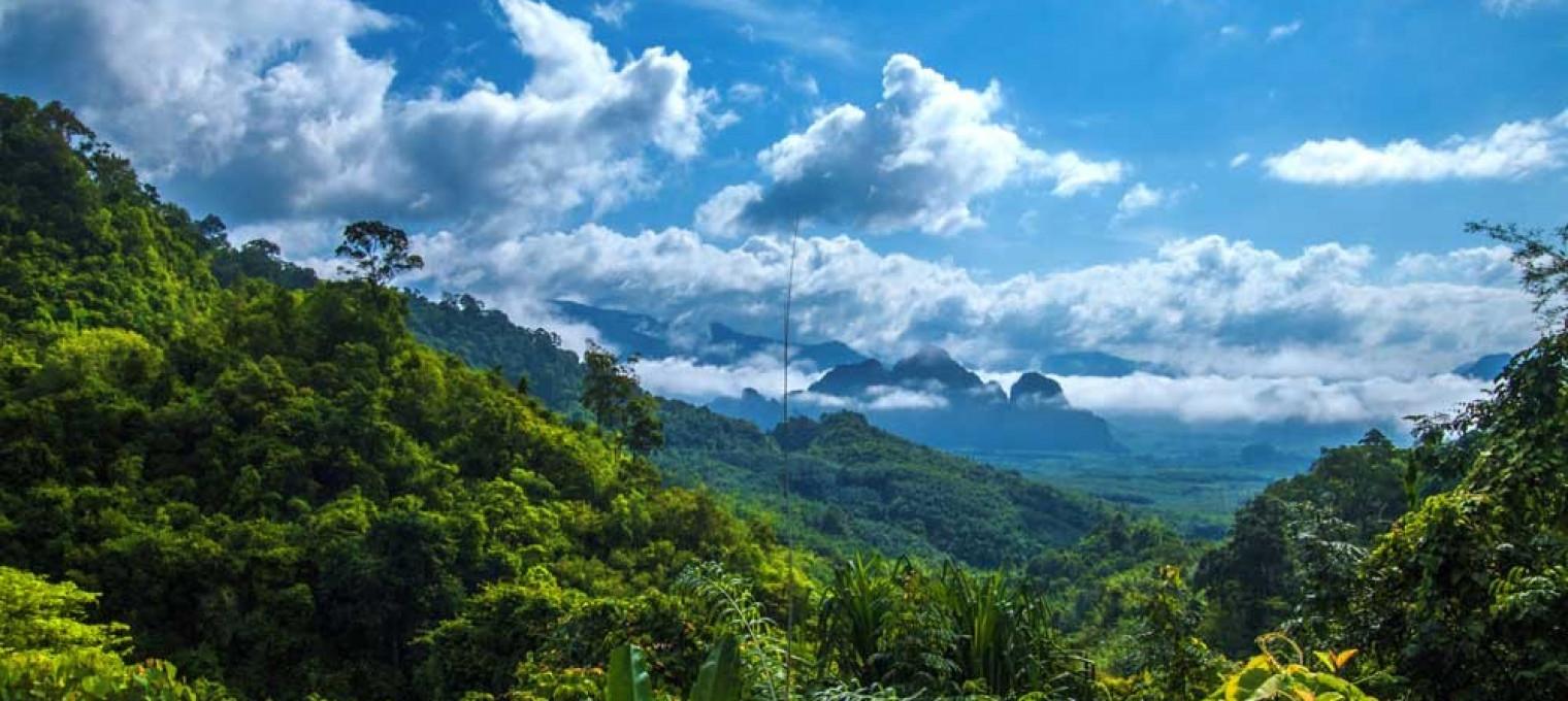 Национальный парк Као Сок Люкс